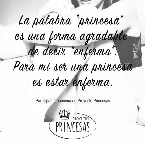 que significa para ti ser una Princesa Ana y Mia?